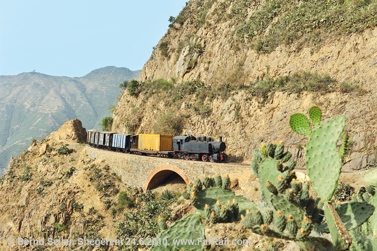 containertrain to Asmara